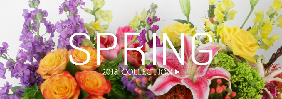 Celebrate with beautiful spring and colorful flowers, centerpieces, and plants.