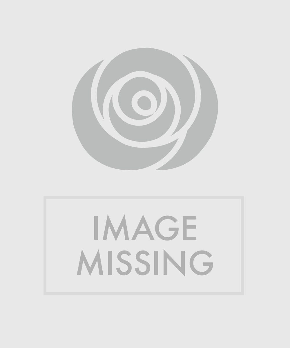 Austin Tx Flower Delivery Custom Design Seasonal Blooming Plant