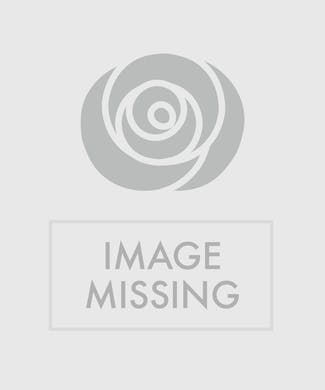 Custom Design Just Because Bouquet $100
