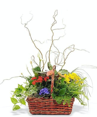 Basket of Remembrance