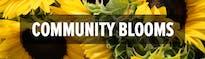 Austin Community Blooms